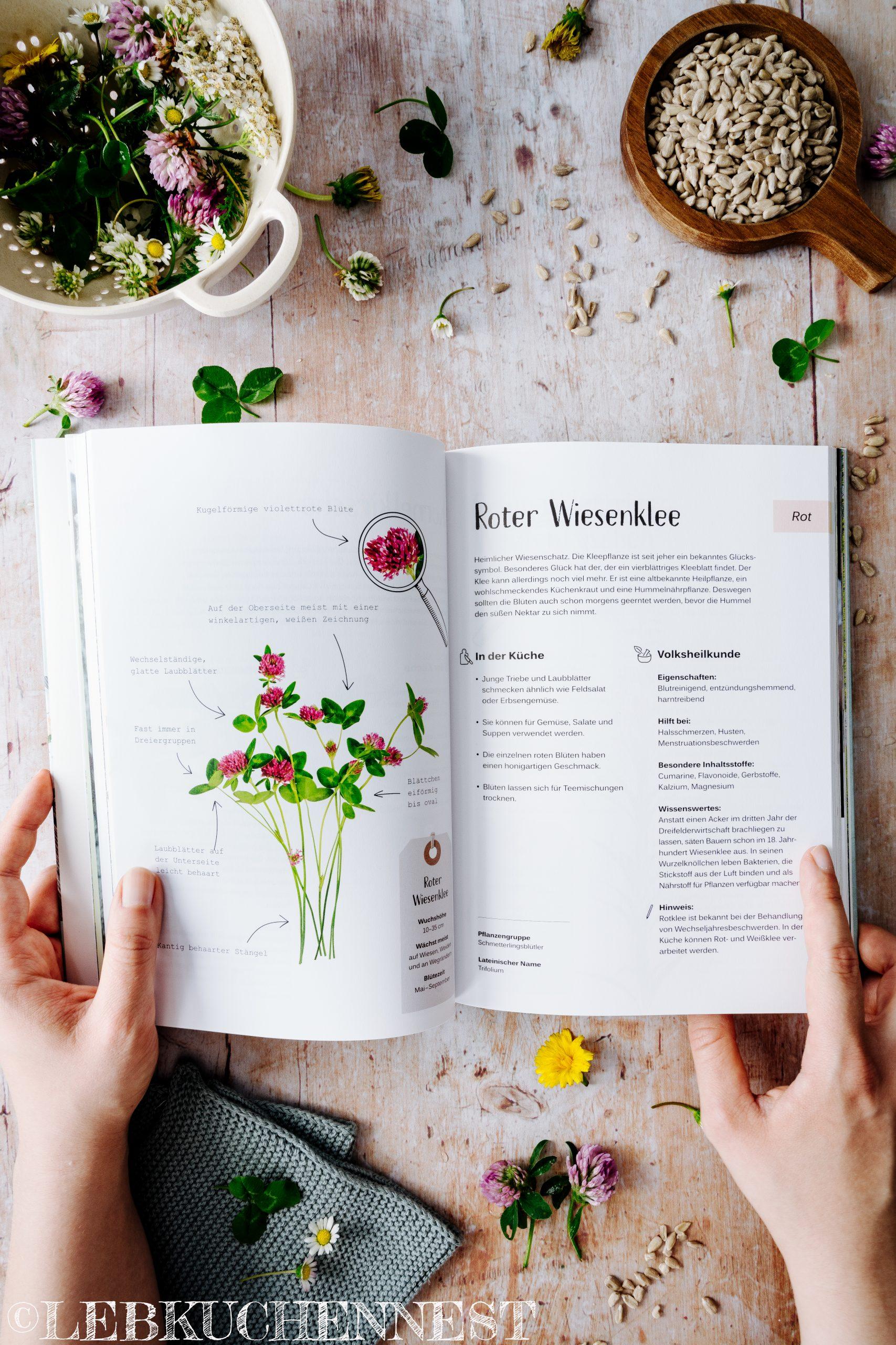 Blick ins Buch - Raus in die Botanik