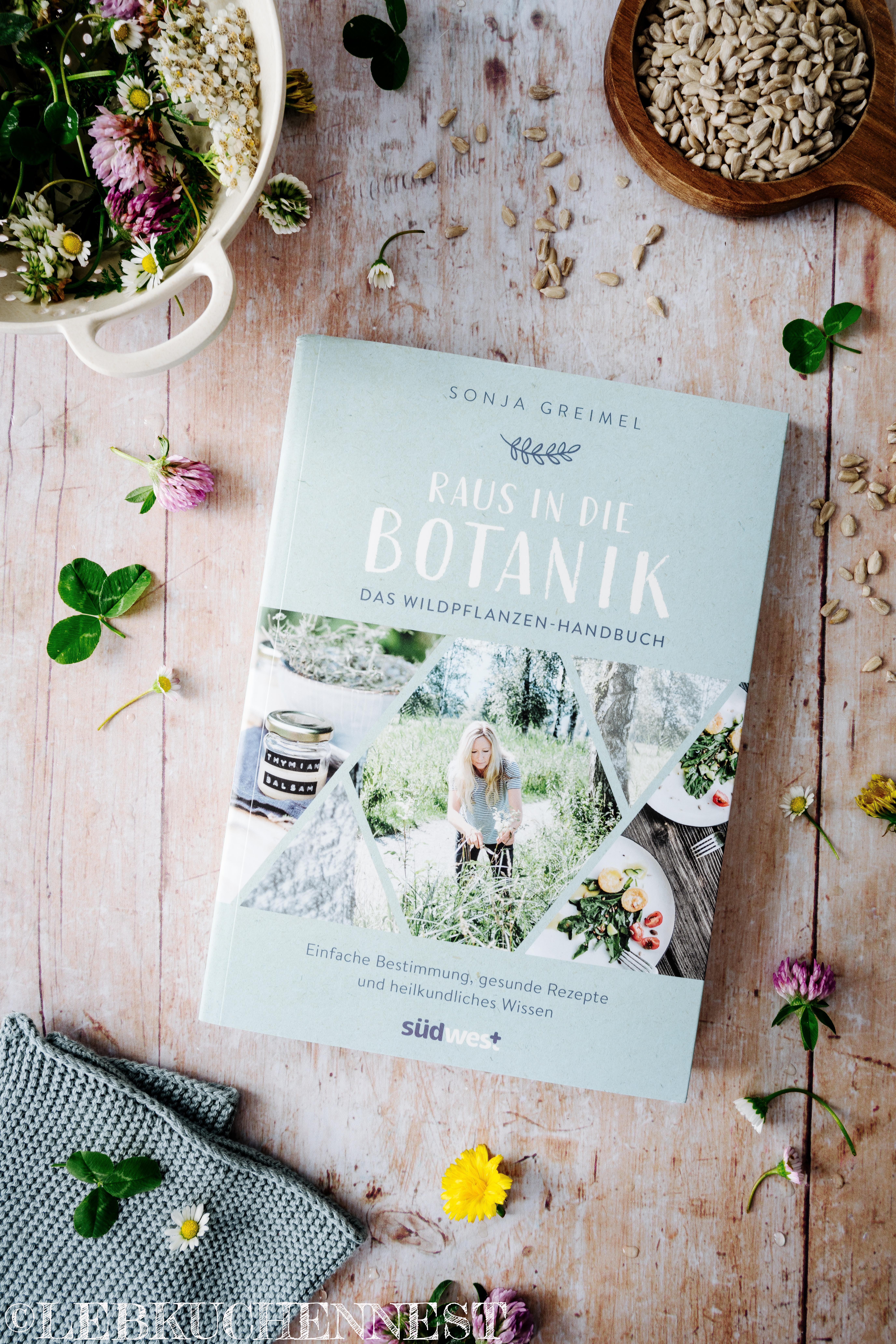 Buchcover - Raus in die Botanik